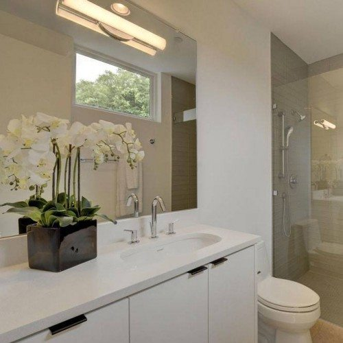 Frameless Inline Shower & Frameless Mirror in Bathroom | Mirrors Gallery | Anchor-Ventana Glass
